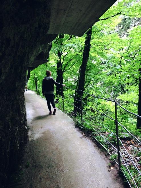 Škocjan caves park