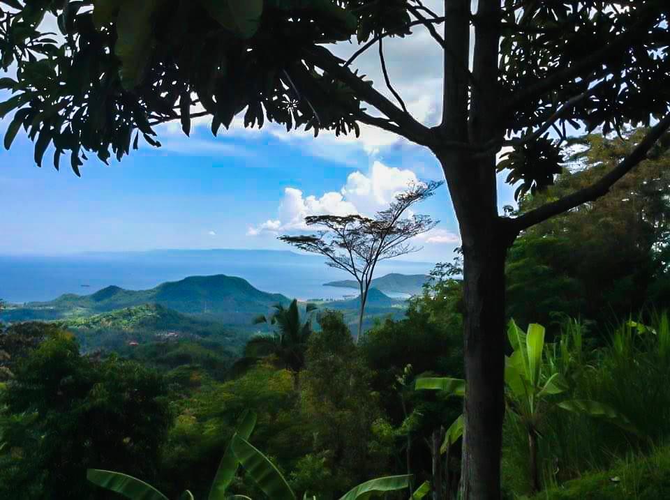 Bali10